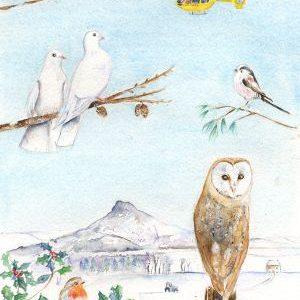 Roseberry Owl Christmas Cards