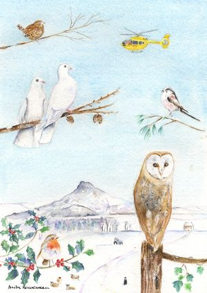 Roseberry Owl Christmas Cards