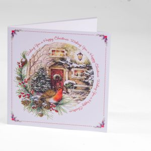 Robin & Red Door Christmas Card
