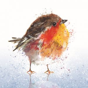 Fluffy Robin on Ice Christmas card 2