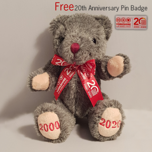 Image of YAA 20th Anniversary Teddy & Free Pin Badge