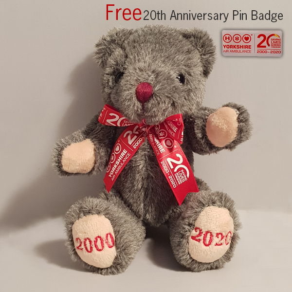 Image of YAA 20th Anniversary Teddy & Free Pin Badge