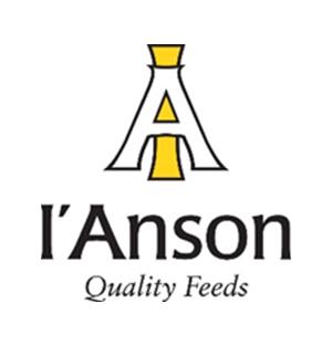 I'Anson Logo