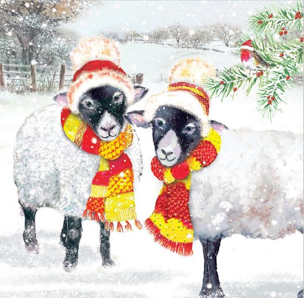 sheep with scarfs